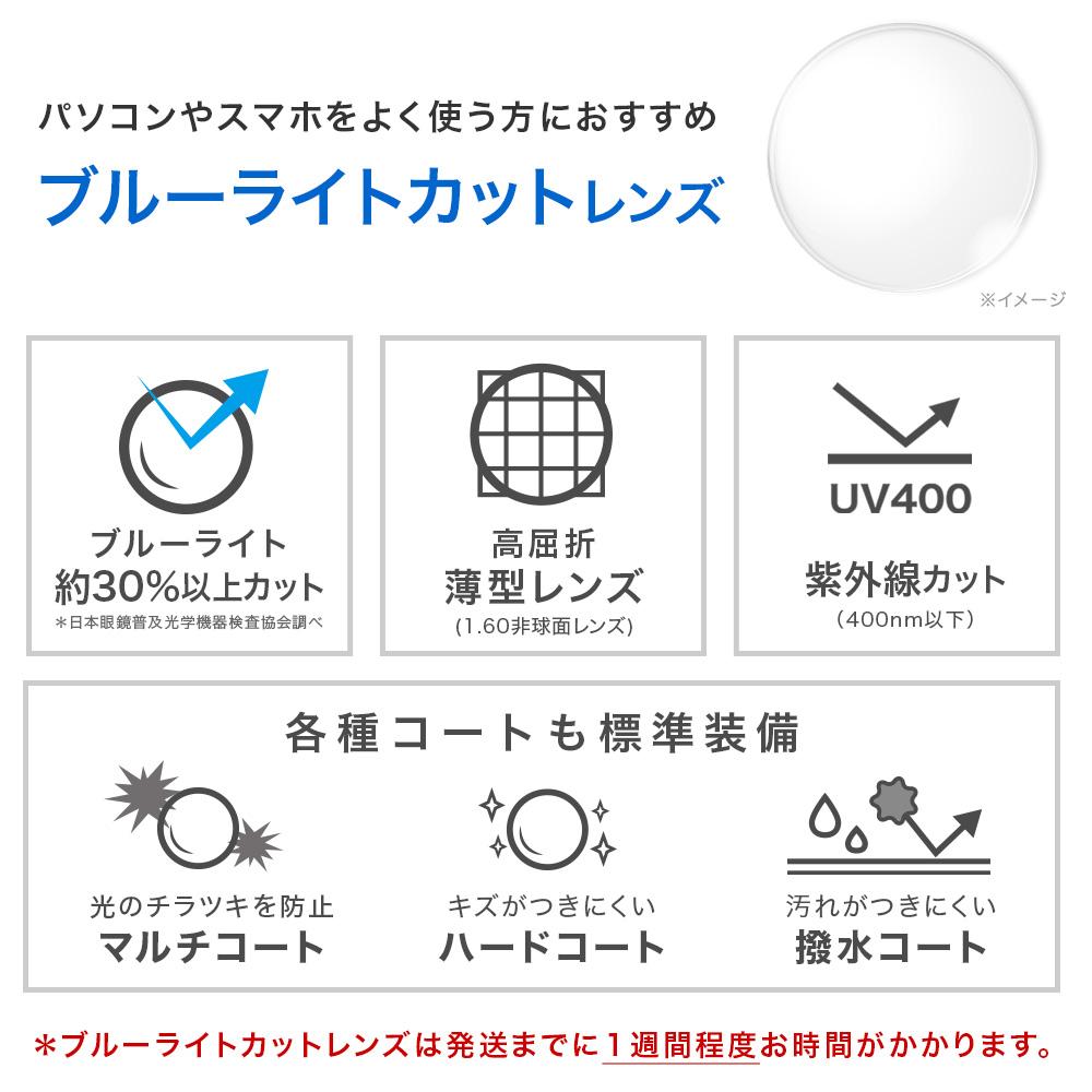 ブルーライトカットレンズ+6,000円