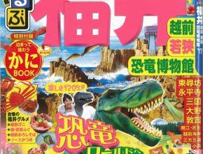 「るるぶ福井 越前 若狭 恐竜博物館'17」